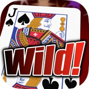 Wild Dream Poker Icon